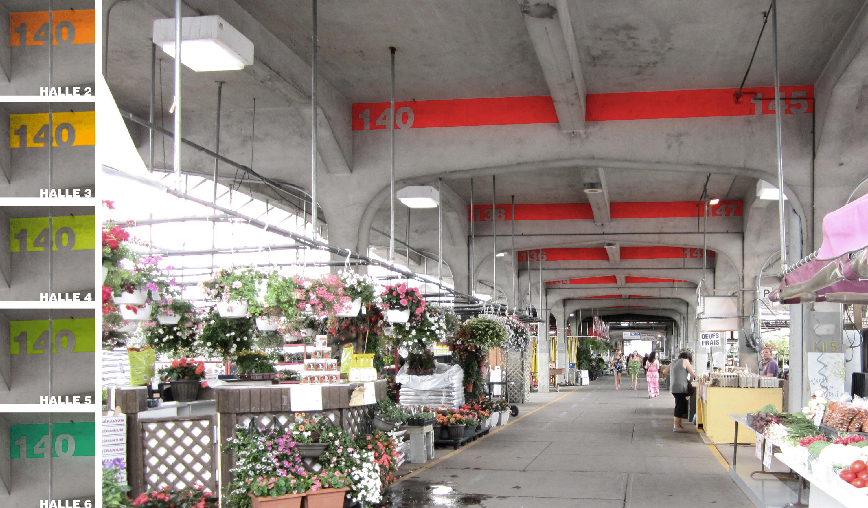 Photomontage - halles du marché Jean-Talon